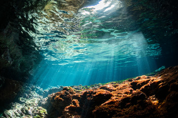 Fototapete - Rays of light into the underwater cave
