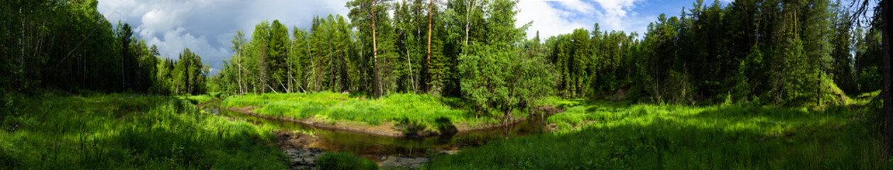 turn of the forest river in the taiga among the tall trees panorama
