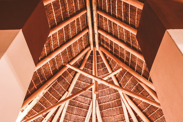 Thatched roof and exposed timber trusses
