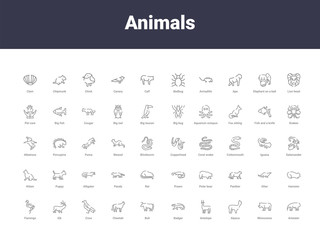 animals outline icons