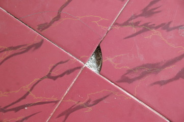The floor of the house that was scratched, was hit by a chair