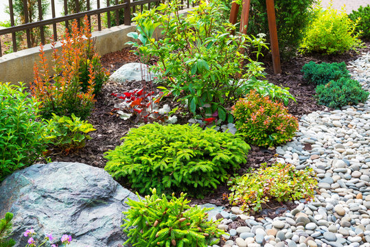 Landscape design in home garden, beautiful landscaping with flowers and stones. Landscaped part of yard or backyard of residential house.