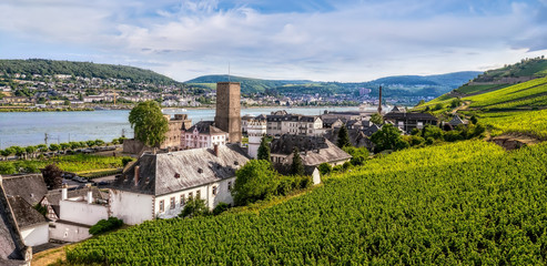 Overlooking the vineyard from the cable car in Niederwalddenkmal of Rüdesheim ,Germany. Fototapete