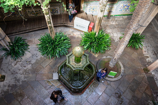 Casa de l'Ardiaca, courtyard shaded by trees and cooled by fountains. Barri Gotic. Barcelona.
