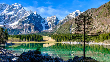 Spring morning at the alpine lake Wall mural