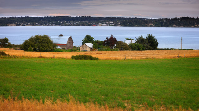 Farm landscape in Whidbey island in washington state