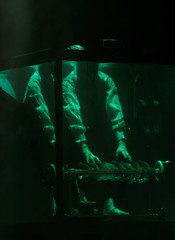 "Danish musician Robert Karlsson plays the crystallophone underwater in a glass water tank during ""AquaSonic"", a submerged musical performance, at the Malta International Arts Festival in Valletta"