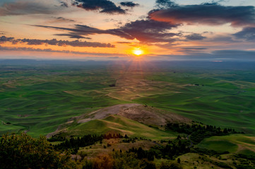 Poster Cultuur Beautiful and Dramatic Palouse, Washington, Summer Sunrise.The rolling hills of the Palouse area of eastern Washington as seen from the famous Steptoe Butte State Park-a photographic paradise.