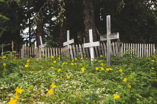 White Crosses and Wildflowers in Remote Cemetery