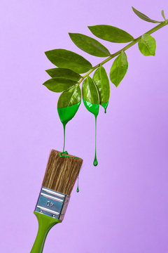 brush and green leaf on a purple background
