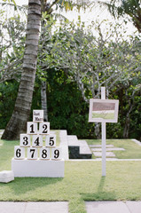 "Fun outdoor wedding games """"coconut toss"""""
