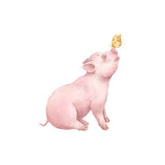 A little piglet and a butterfly. Hand drawn illustration.