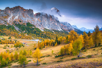 Wall Mural - Majestic autumn landscape with yellow larches in Dolomites, Italy