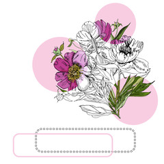 Collection with bouquet of peony flowers, pink circles and frames. Hand drawn ink and colored sketch of  peony. Colored elements isolated on white background for banner, invitation or greeting card.