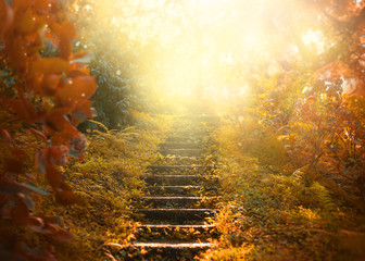 Autumn background, stairs to the sky. amazing mysterious road steps leads to mystical world, fairytale path hides among yellow and orange trees, magical October in foggy forest, beauty of nature Fotomurales