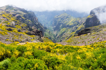 Madeira - Madeira - Wanderung im Zentralgebirge: Grandiose Aussicht