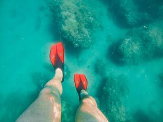 mans legs in red flippers underwater snorkeling