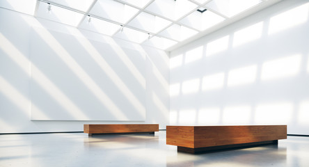 Gallery interior with blank picture frames spot lights and natural sunlights. 3d rendering.