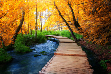 Fototapeta Beautiful wooden path trail for nature trekking with lakes and waterfall landscape in Plitvice Lakes National Park, UNESCO natural world heritage and famous travel destination of Croatia. obraz
