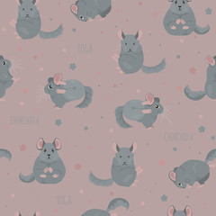 Chinchilla yoga poses and exercises. Cute cartoon seamless pattern