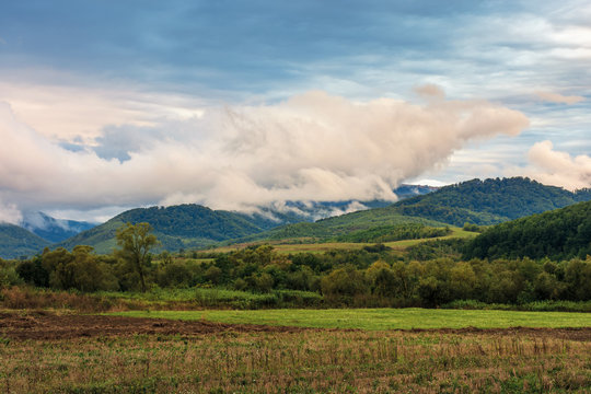 rural field in the mountains at sunrise. trees on the edge of a meadow. overcast weather with interesting cloud formation above the ridge. early autumn weather
