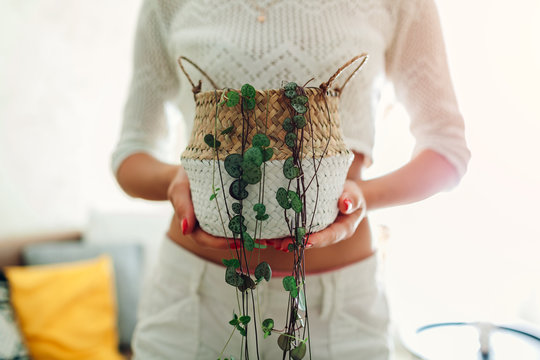 Woman holding basket with String of hearts at home. Housewife taking care of home plants and flowers.