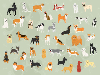 cute dogs in action wallpaper design