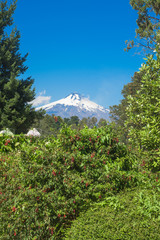 Pucon in central Chile on a blue skies sunny day