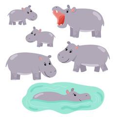Set of cartoon vector hippo. African animals. Family hippopotamus, hippopotamus swims in the water. Isolated on white background.