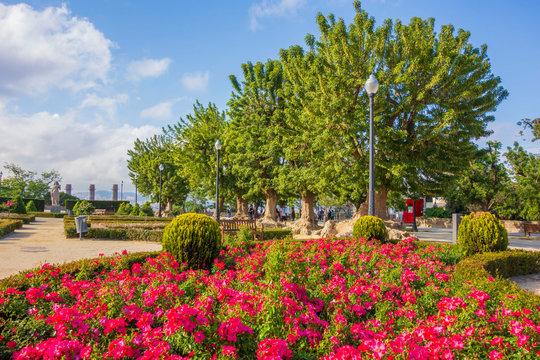 Public garden, Jardins de Miramar, Montjuic Park, Barcelona, Catalonia, Spain.