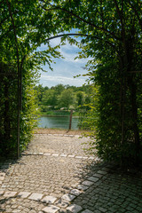 arbour of beech branches and leaves with view onto a lake