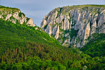 Turda Gorge (Cheile Turzii) entrance with massive, tall, rock walls, early in the morning, with sunrise light and green forest, during Summer. Popular hiking and climbing destination in Romania.