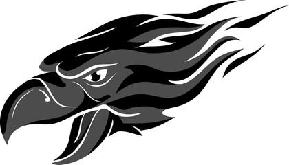 Grey Flame Head Eagle