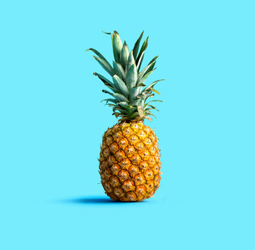 One pineapple on a solid color background