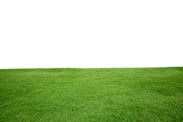 Green Grass Texture with White Blank Copyspace Wall mural
