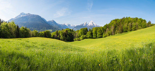 Foto op Plexiglas Blauwe hemel Scenic panoramic view of idyllic rolling hills landscape with blooming meadows and snowcapped alpine mountain peaks in the background on a beautiful sunny day with blue sky and clouds in springtime