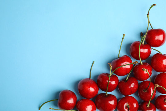 Composition with sweet cherries on light blue background, top view. Space for text
