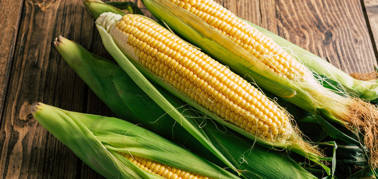 Fresh corn on the cob on a wooden background, long banner