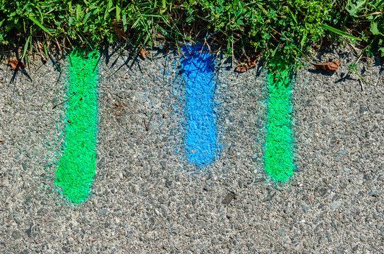 Blue and green utility markings on a sidewalk