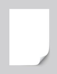 Realistic empty paper sheet curled corner of with shadow - stock vector.