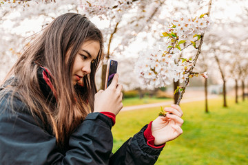 Young mixed race woman taking photo of tree's branch by smatphone.