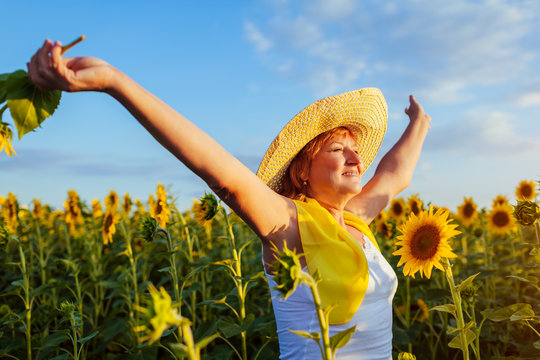 Senior woman walking in blooming sunflower field feeling free and admiring view. Summer vacation