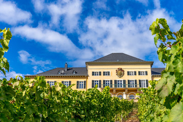Ruedesheim Schloss Johannisberg, GERMANY, October 01, 2018: Schloss Johannisberg castle Rheingau