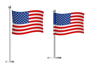 United States flag on pole icon Wall mural
