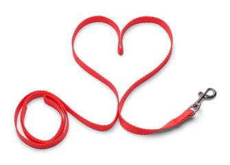 Heart Dog Leash