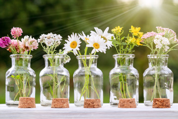 Several small glass bottles with bouquets of medicinal plants - homeopathy or herbal medicine concept