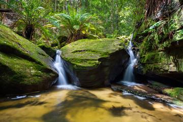Fotobehang - Lush green foliage and twin waterfalls in nature