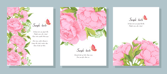 Obraz Pink peony flowers leaves buds and leaves herbs and butterfly on white. - fototapety do salonu