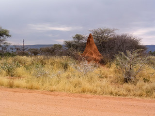 Termite mound of red earth in northern Namibia, Africa.