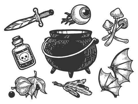 Magical fabulous witch ingredients items sketch engraving vector illustration. Scratch board style imitation. Hand drawn image.